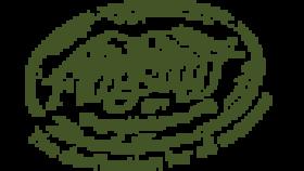 Official Flagstaff Travel logo