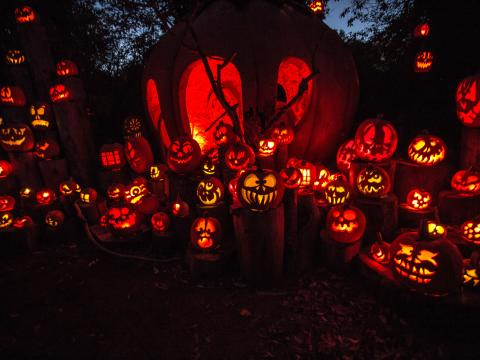 The spectacle of Jack-O-Lantern Spectacular at Roger Williams Park Zoo